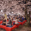 Mit tudsz a sakura ünneprõl?