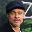 Professzor Brad Pitt új szerelme?
